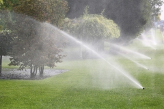 Gardening. Lawn Sprinkler Spraying Water Over Green Grass in Garden
