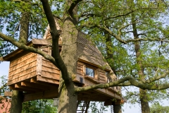 Treehouse as a holiday home